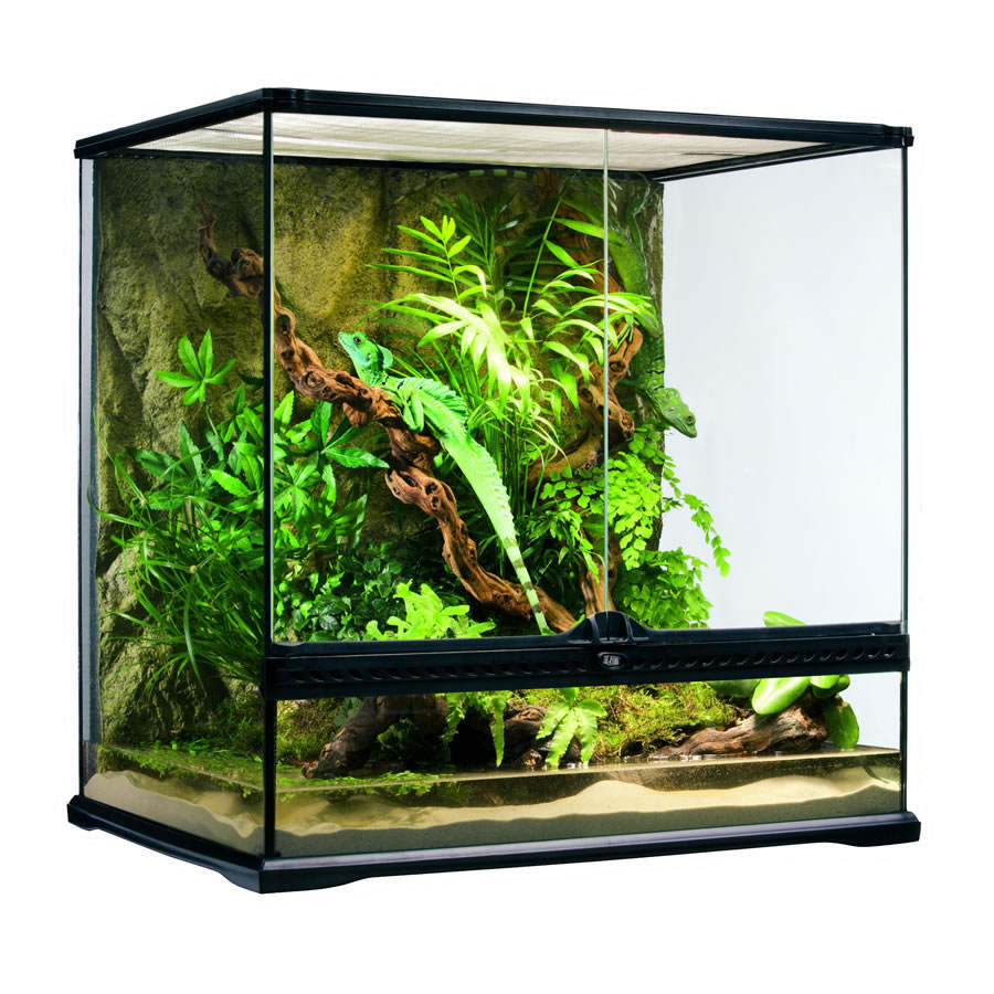 exo terra glass terrariums all care reptiles all care. Black Bedroom Furniture Sets. Home Design Ideas